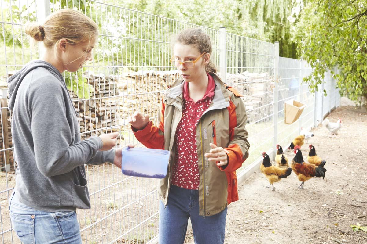 Unsere Hühner werden jeden Tag mit frischem Futter versorgt